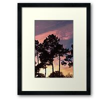 Sunset - Clouds, wind and trees Framed Print