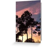 Sunset - Clouds, wind and trees Greeting Card