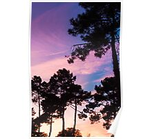Sunset - Clouds, wind and trees #2 Poster