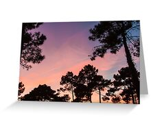 Sunset - Clouds, wind and trees #3 Greeting Card