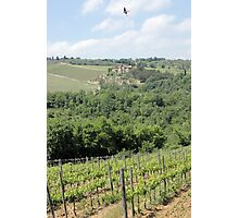 Soar the Tuscan Fields Photographic Print