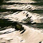Waves by Jan Fijolek
