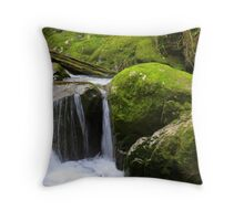 Mossy Boulders on Sweet Creek, Oregon Throw Pillow
