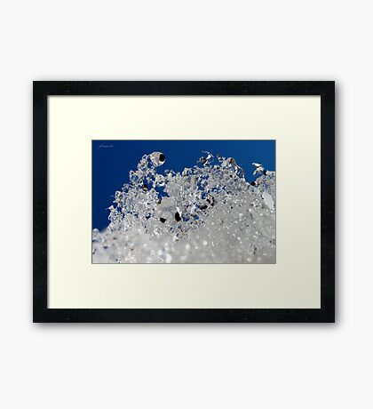 Winter Skyward Framed Print