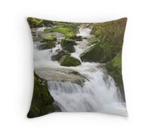 Small rapids on Sweet Creek. Oregon Throw Pillow