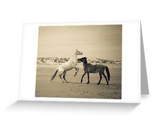 Wild Horses of Cumberland Island 2 Greeting Card