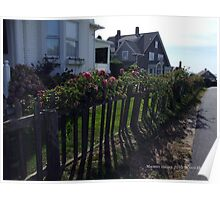 Lighthouse Road Watch Hill, Wild Roses on a Wooden Fence Poster