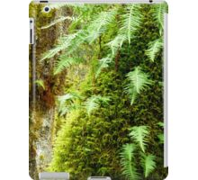 Early Spring in the Rain Forest   iPad Case/Skin