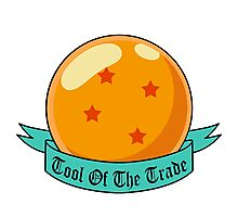 Tool of the Trade - 4 Star Dragonball Photographic Print
