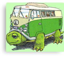 Turtle Bug Canvas Print