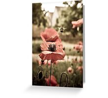 Poppies and the Busy Bee Greeting Card