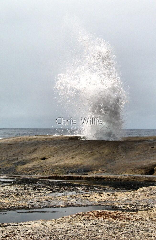 Blow Hole. Bicheno. Tasmania by Chris  Willis