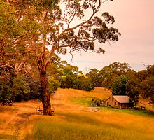 Gumtree Cottage, Adelaide Hills by Elana Bailey