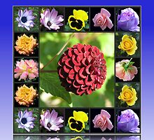 Summer Flowers Collage in Reflection Frame featuring Dahlia by BlueMoonRose