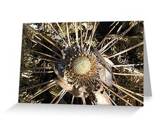 Cycad in the Dry. Greeting Card