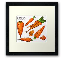Set simple sketch icons carrots isolated on white background. Vegetables. Food. Hand drawn  Framed Print