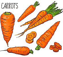 Set simple sketch icons carrots isolated on white background. Vegetables. Food. Hand drawn  Photographic Print