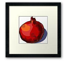 watercolor hand drawn vintage illustration of pomergranate Framed Print