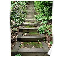 The Stairs in the Woods Poster
