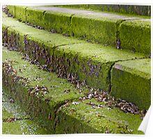 Green Steps Poster