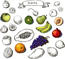 Set of Doodle Fruits - for scrapbook or design - hand drawn Photographic Print