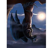 How To Train Your Dragon - Funny Toothless Photographic Print