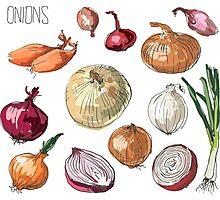 illustration of retro organic Onions set Photographic Print