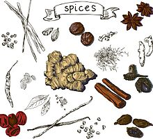 illustration background with hand drawn spices by OlgaBerlet