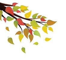 Fall Leaves on Branch 2 by AnnArtshock