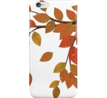Fall Leaves on Branch iPhone Case/Skin
