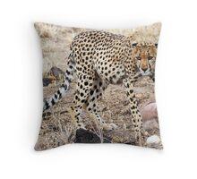 CHEETAH AT A KILL - KENYA Throw Pillow
