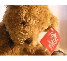 Teddy's Loney Photographic Print