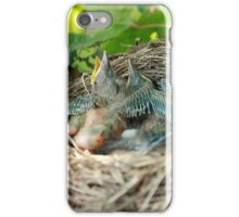 Azores blackbird nest iPhone Case/Skin