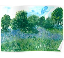 Bluebells oil painting on paper Poster