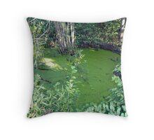 Pond Stillness Throw Pillow