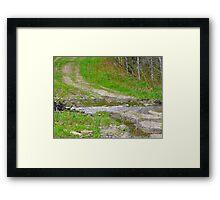PotHoles on the Upward Path of Life Framed Print