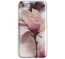 magnolia blooming  on tree iPhone Case/Skin