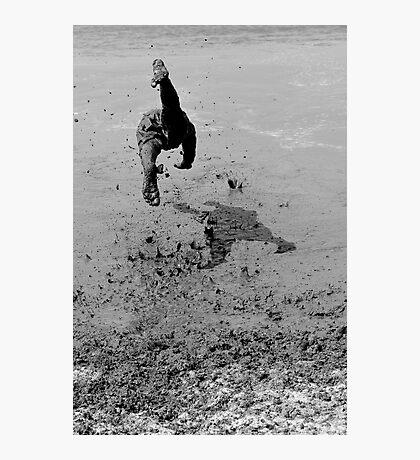Mud Diving Photographic Print