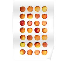 Apple in rows Poster