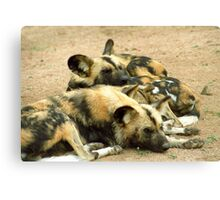 What dogs do best (African hunting dogs) Canvas Print