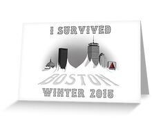 I Survived Boston Winter 2015 (White) Greeting Card