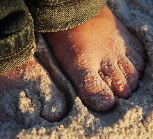 Tiny Toes by Jenny Ryan