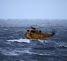 Rescue Operation by Tim Emmerson
