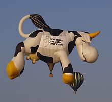 When Cows Fly by Steve Hunter