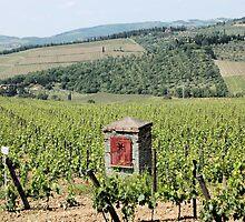 Tuscan Vines by Sheri Greenberg