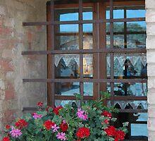 Tuscan Windowsill by Sheri Greenberg