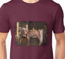Iaconagraphy Equus: Bloody Shoulder Arabian Unisex T-Shirt