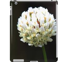 Orchid Ball iPad Case/Skin