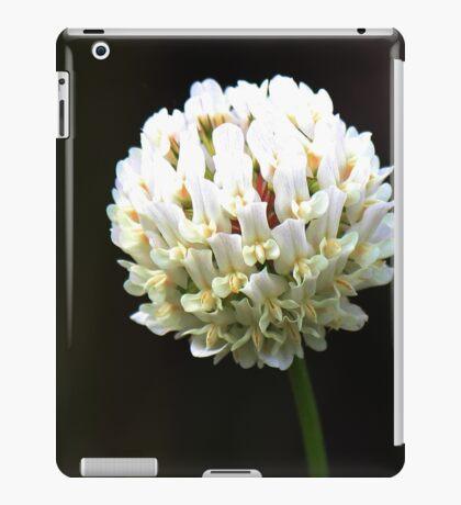 Orchid Ball iPad Case/Skin
