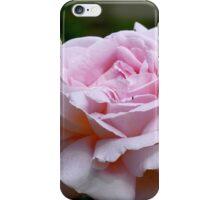 Love & Gratitude - Pink Rose - NZ iPhone Case/Skin